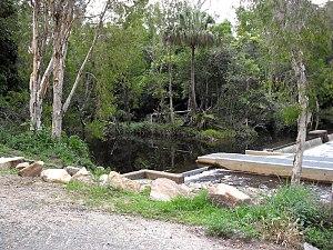 Capricorn Coast - Waterpark Creek Byfield
