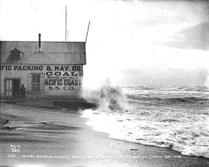 Pacific Packing and Navigation Company - Image: Waves breaking against Pacific Packing & Navigation Co office on the beach during a storm of 1902, Nome, Alaska (HEGG 688)