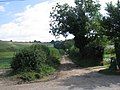 Wessex Ridgeway from Folly - geograph.org.uk - 535173.jpg