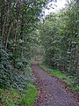 West Loch Lomond Cycle Path - geograph.org.uk - 261585.jpg