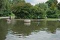 Westfalenpark-100818-17505-Robinson.jpg