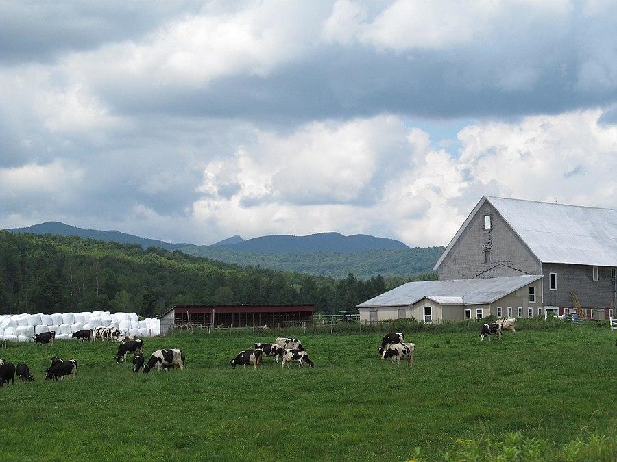 Westfield, Vermont