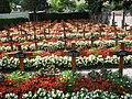 Westfriedhof Innsbruck Barmherzige Schwestern 2.jpg