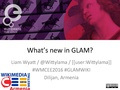 Whats new in GLAM 2016.pdf