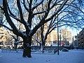 White Den Haag (5271681086).jpg