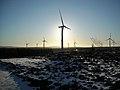 Whitelee Wind Farm - geograph.org.uk - 1074026.jpg