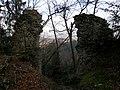 Wildenlack Castle Slovenia 4.jpg