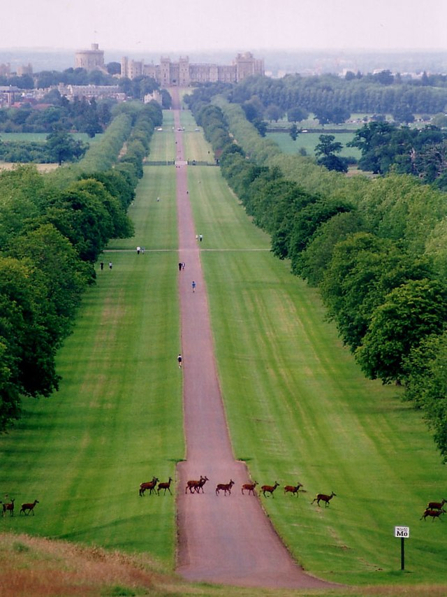 Windsor Great Park - Wikiwand