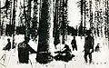 Winter Forestation in Maoka.jpg