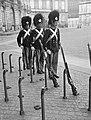 Wisseling van de wacht voor paleis Amalienborg om1200 uur 's middags, Bestanddeelnr 252-1331.jpg