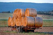 WoodvilleHayWagon-1
