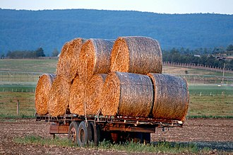 Woodville, New South Wales - Image: Woodville Hay Wagon 1