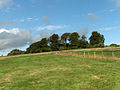 Woolley Down - geograph.org.uk - 228457.jpg