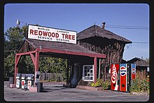 World's Largest Redwood Tree Service Station (1936), angle, Route 101, Ukiah, California LOC 37143730483.jpg