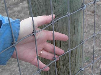 Horse care - A heavy woven mesh with closely spaced strands is relatively safe for horses, as they cannot easily break the fence nor put a foot through it