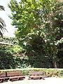 YAD BEN ZVI VIEW 30 20120912 142734.jpg