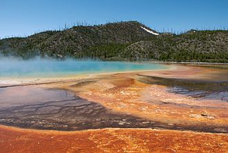 Geobiology - The colorful microbial mats of Grand Prismatic Spring in Yellowstone National Park, USA. The orange mats are composed of Chloroflexi, Cyanobacteria, and other organisms that thrive in the 70˚C water. Geobiologists often study extreme environments like this because they are home to extremophilic organisms. It has been hypothesized that these environments may be representative of early Earth.