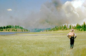 Yellowstone fires of 1988 - 1953: a firefighter hikes to a distant fire.