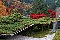 Yoshimine-dera (8256317474).jpg