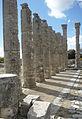 Zeus Tapınağı sütunları.JPG