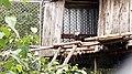 Zoo de Falardeau 128.jpg