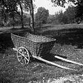 """""""Šajtrga"""" za vožnjo pridelkov in krme, Draga pri Šentrupertu 1961.jpg"""
