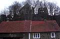 Świny zamek - widok z drogi. Foto Barbara Maliszewska.JPG