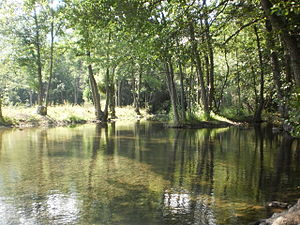 Image of Šuica (river): http://dbpedia.org/resource/Šuica_(river)