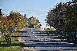 Автошлях Р-39 з боку Плотичі