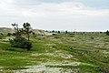 Бывшая линия связи вдоль Терского берега.jpg