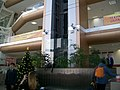 В здании Технического университета УГМК.jpg