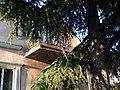 Дом с фигурным балконом. Около Кольца. Алушта. Крым. Июнь 2009 - panoramio.jpg