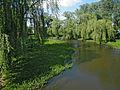Дубно. Река Иква..jpg