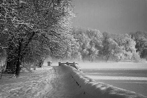 Зимовий ранок в парку