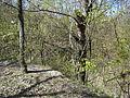 Змиевы печеры-3.JPG