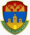Иркутское казачье войско (шеврон).png