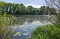 Магістратське озеро, Чернігів.JPG