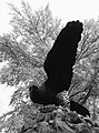 Марьино Монумент Орел (фото 13) Рыльский район 2019.jpg