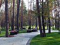 Парк ЦЕНТРАЛЬНІЙ (13).jpg