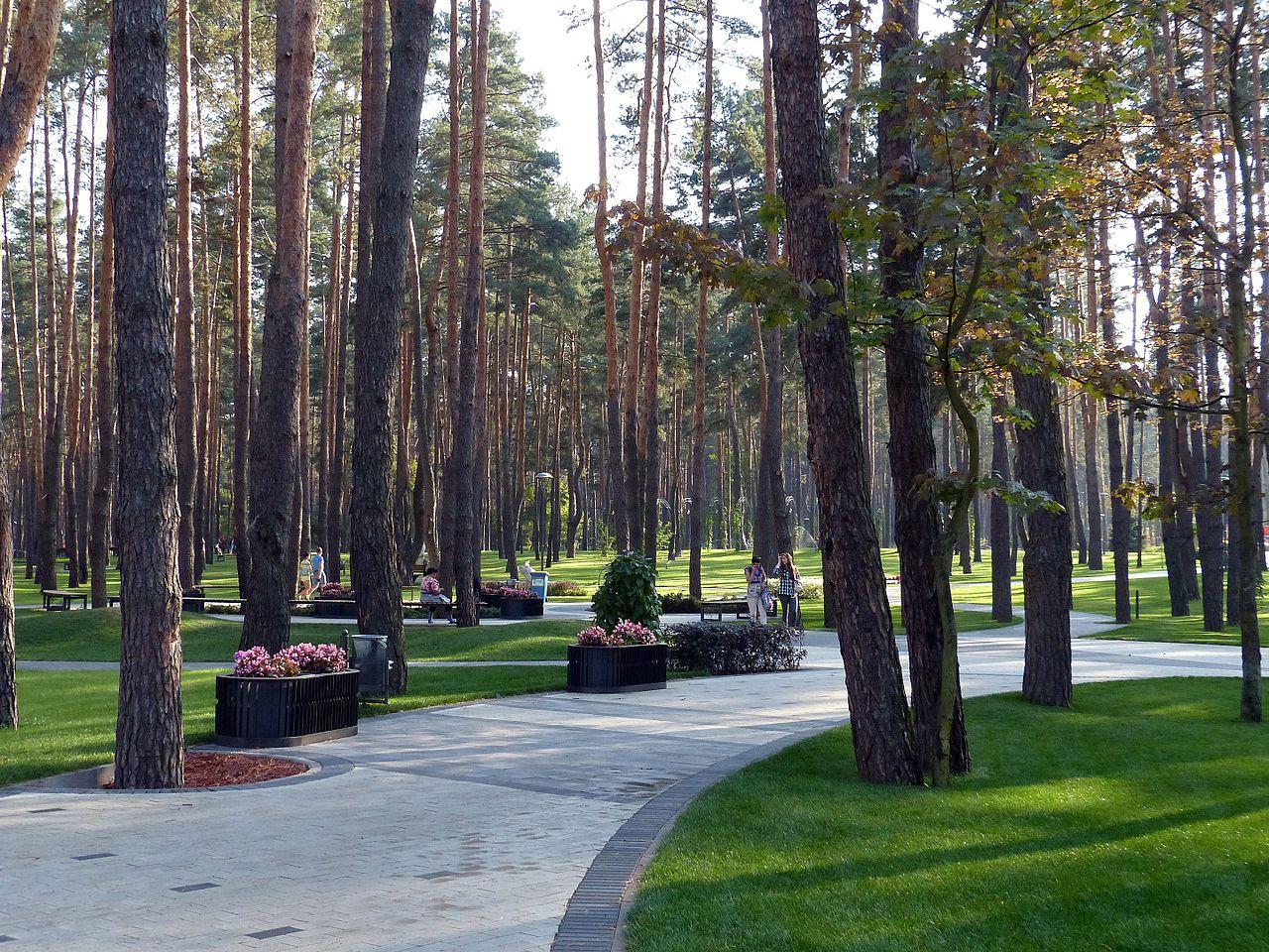Парк в городе Ирпень