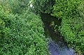 Река Матица (Дебрца - Охридско) 02.jpg