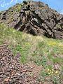 Скелі Мопра 48.jpg