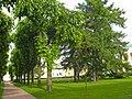 Таврический дворец, сад02.jpg