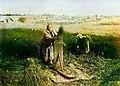 Чесание льна 1899.jpg