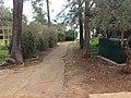 לאורך כביש 5 - מיכל מיכאלי מצלמת (8514609197).jpg