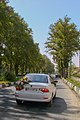 گل زدن ماشین عروس 06.jpg