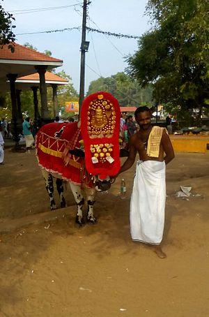 Oachira - Holy animal being worshipped