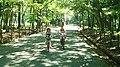 井頭公園 - panoramio.jpg