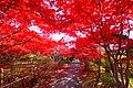 平岡樹芸センター(Hiraoka arboriculture center) - panoramio (5).jpg