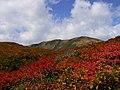 栗駒山 Mt. Kurikoma 1627mH - panoramio.jpg